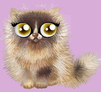 Recueillir un chat de race shiny persan